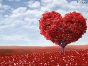 cropped-love-tree2.jpg